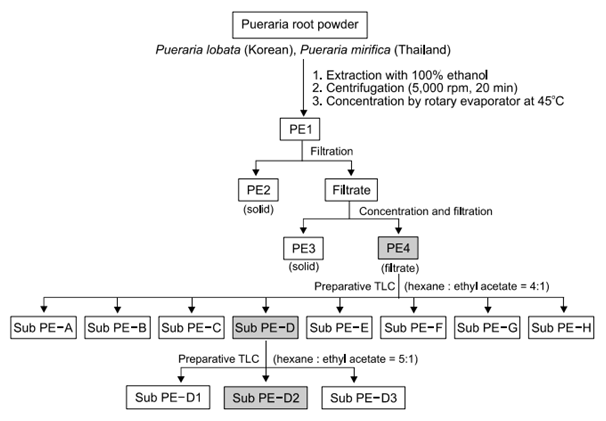 Purification scheme of Pueraria extract
